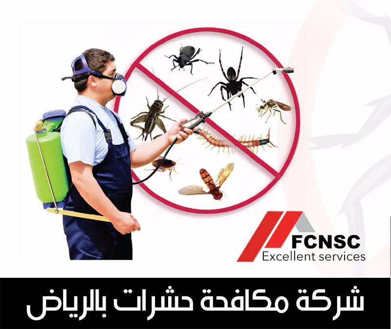 أرقام شركة مكافحة حشرات الرياض